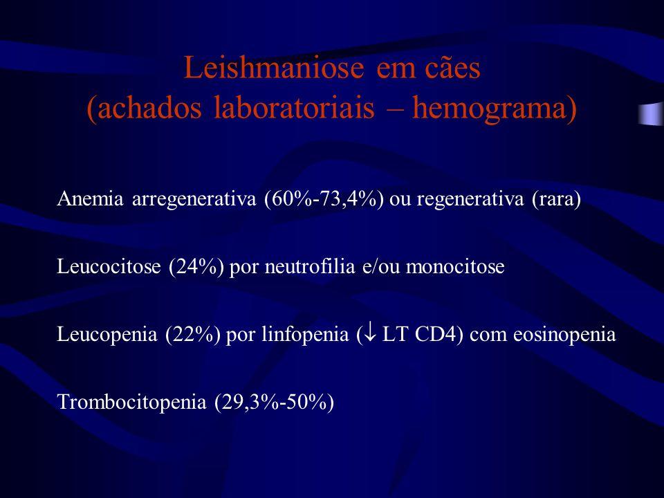 Leishmaniose em cães (achados laboratoriais – hemograma)