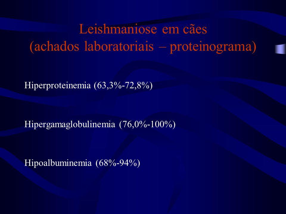 Leishmaniose em cães (achados laboratoriais – proteinograma)