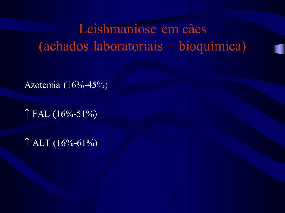 Leishmaniose em cães (achados laboratoriais – bioquímica)