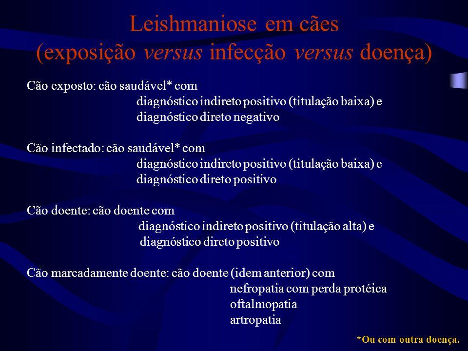 Leishmaniose em cães (exposição versus infecção versus doença)