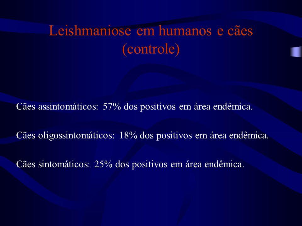 Leishmaniose em humanos e cães (controle)