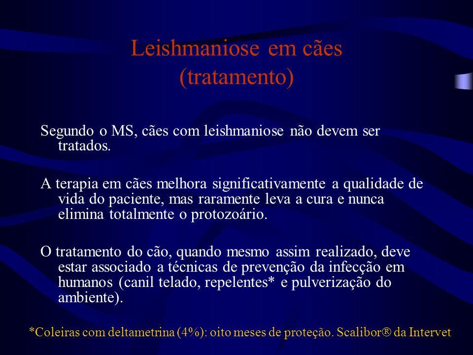 Leishmaniose em cães (tratamento)