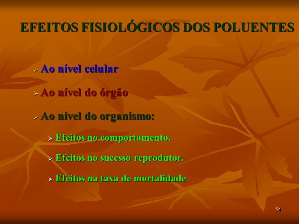 EFEITOS FISIOLÓGICOS DOS POLUENTES