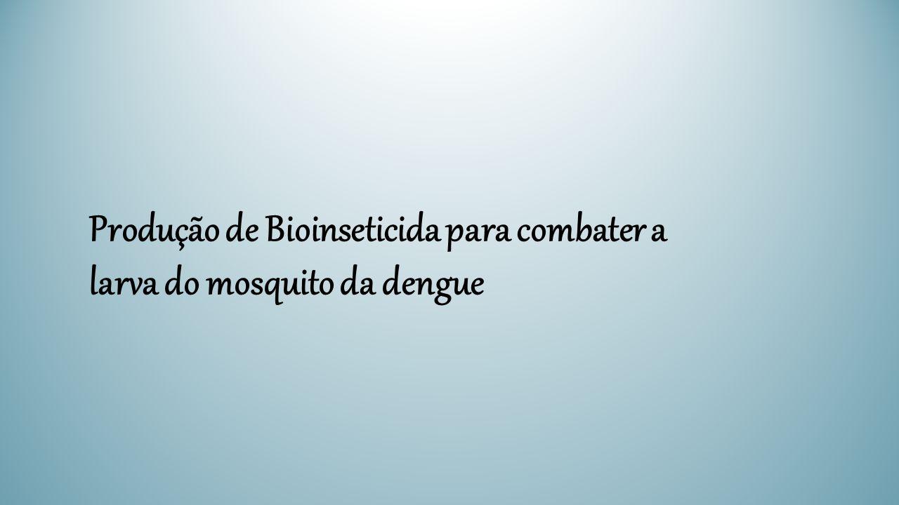 Produção de Bioinseticida para combater a larva do mosquito da dengue