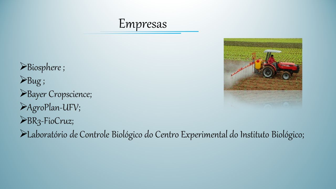 Empresas Biosphere ; Bug ; Bayer Cropscience; AgroPlan-UFV;