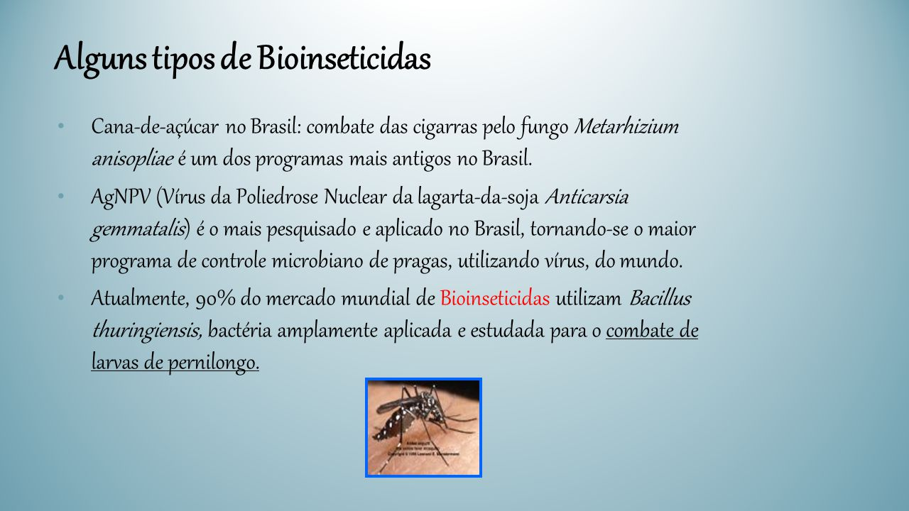 Alguns tipos de Bioinseticidas