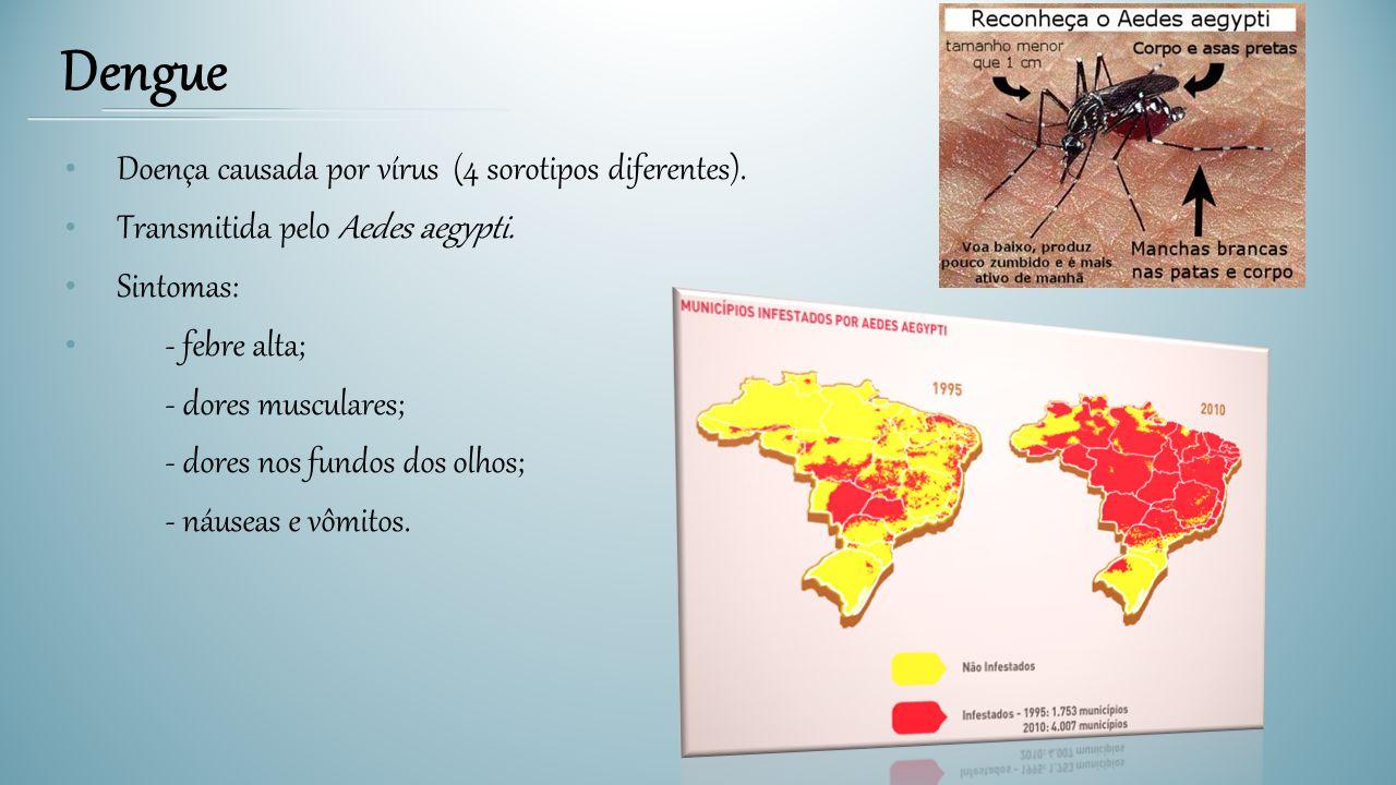 Dengue Doença causada por vírus (4 sorotipos diferentes).