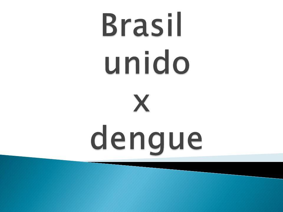 Brasil unido x dengue