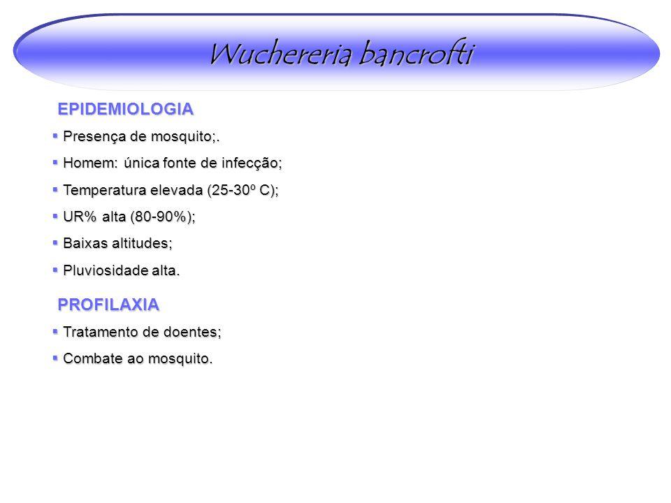 Wuchereria bancrofti EPIDEMIOLOGIA PROFILAXIA Presença de mosquito;.