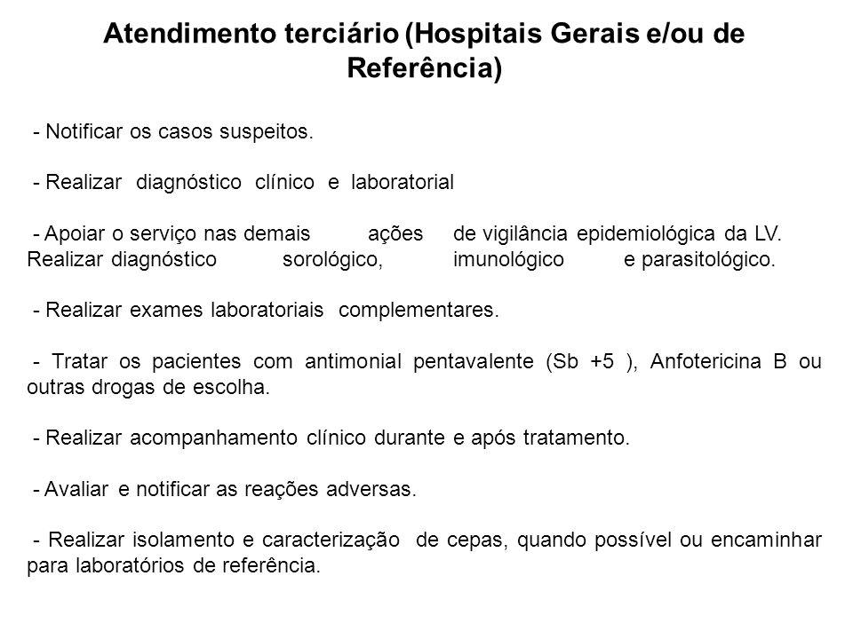 Atendimento terciário (Hospitais Gerais e/ou de Referência)