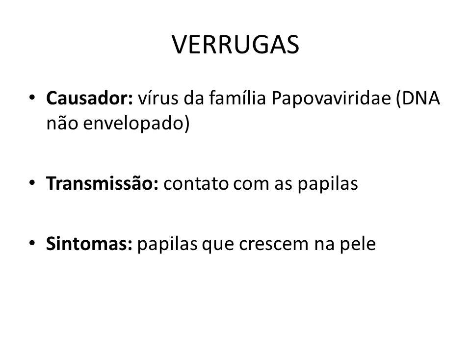 VERRUGAS Causador: vírus da família Papovaviridae (DNA não envelopado)