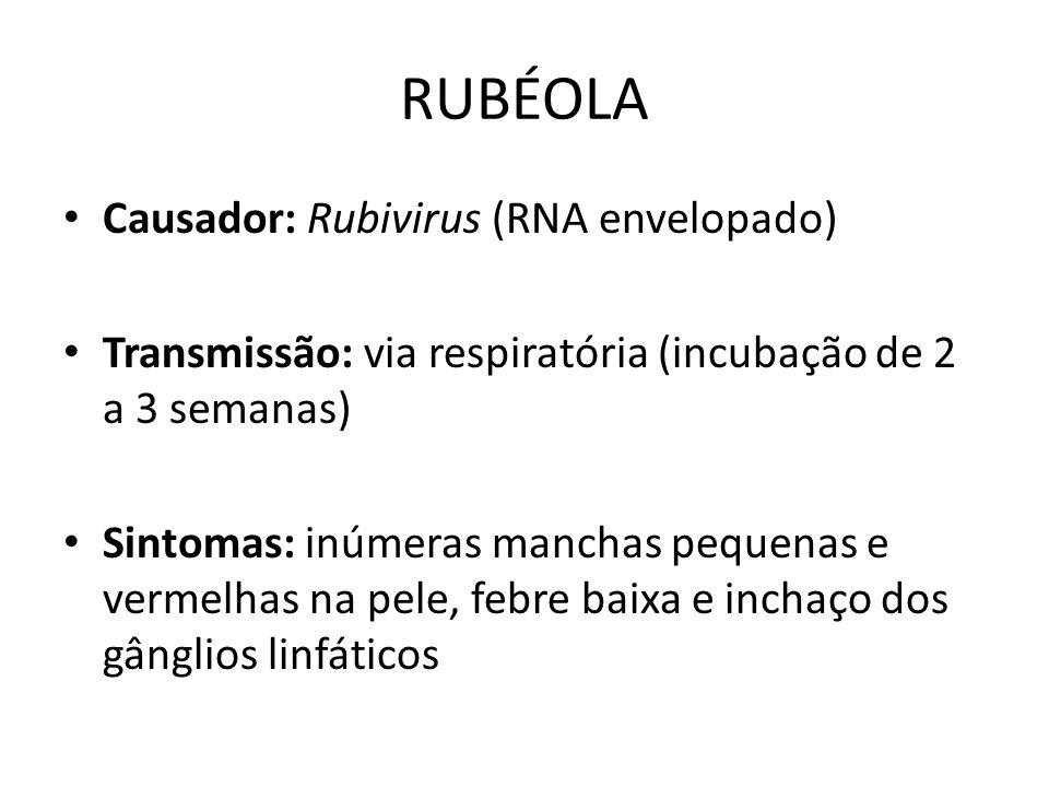 RUBÉOLA Causador: Rubivirus (RNA envelopado)
