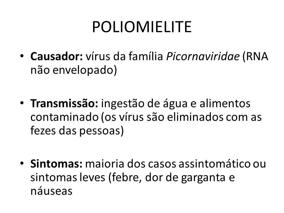 POLIOMIELITE Causador: vírus da família Picornaviridae (RNA não envelopado)