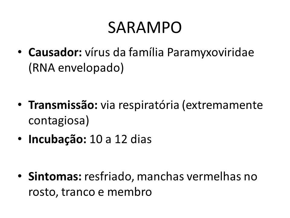 SARAMPO Causador: vírus da família Paramyxoviridae (RNA envelopado)
