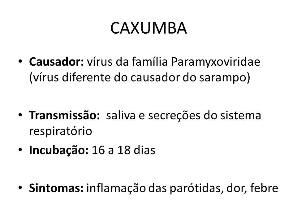 CAXUMBA Causador: vírus da família Paramyxoviridae (vírus diferente do causador do sarampo) Transmissão: saliva e secreções do sistema respiratório.