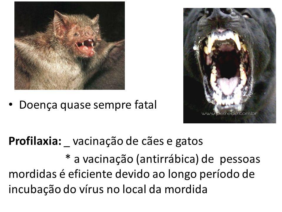 Doença quase sempre fatal