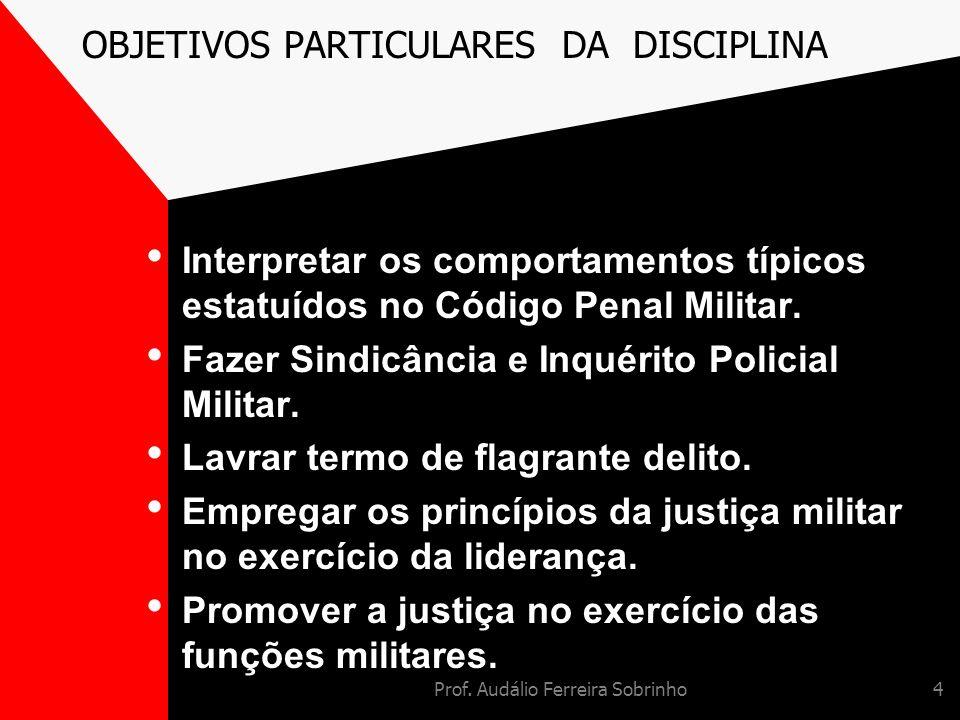 OBJETIVOS PARTICULARES DA DISCIPLINA