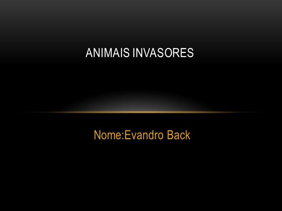 ANIMAIS INVASORES Nome:Evandro Back
