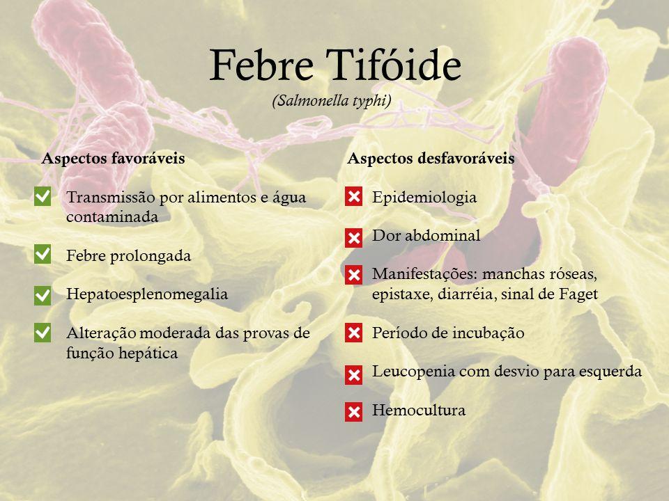 Febre Tifóide (Salmonella typhi) Aspectos favoráveis