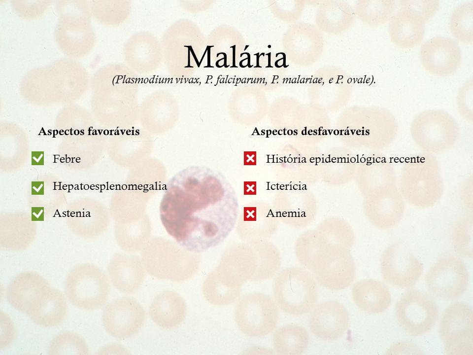 (Plasmodium vivax, P. falciparum, P. malariae, e P. ovale).