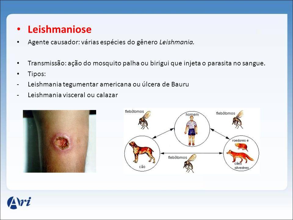 Leishmaniose Agente causador: várias espécies do gênero Leishmania.