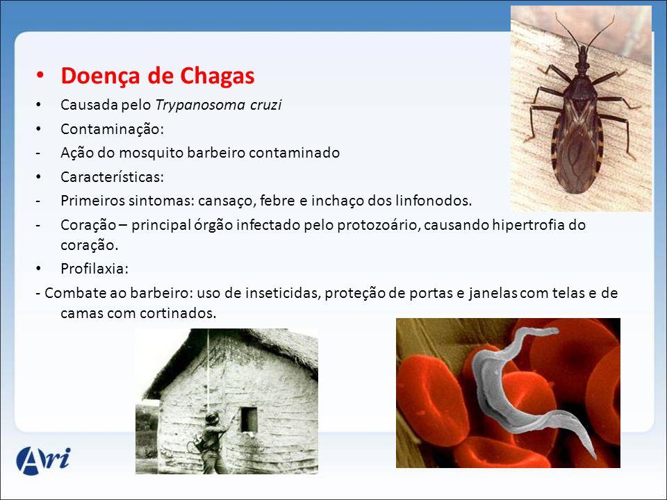 Doença de Chagas Causada pelo Trypanosoma cruzi Contaminação: