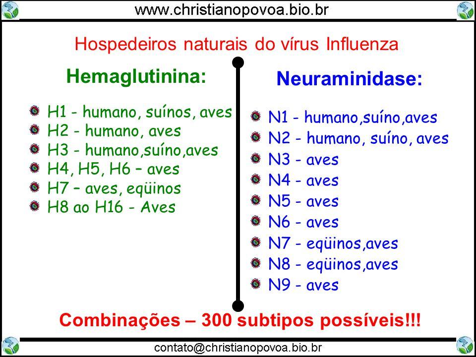 Hospedeiros naturais do vírus Influenza