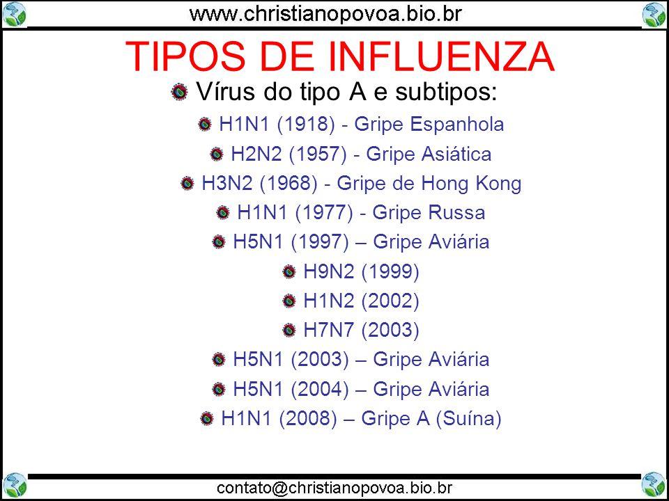 TIPOS DE INFLUENZA Vírus do tipo A e subtipos: