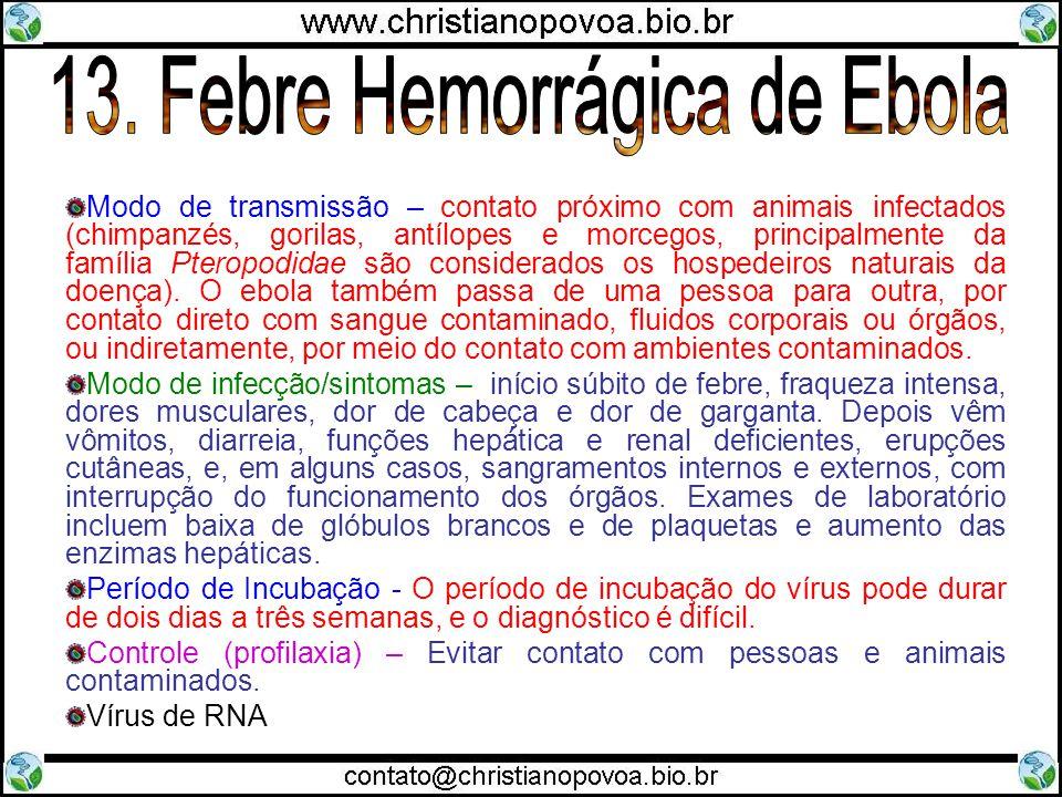 13. Febre Hemorrágica de Ebola