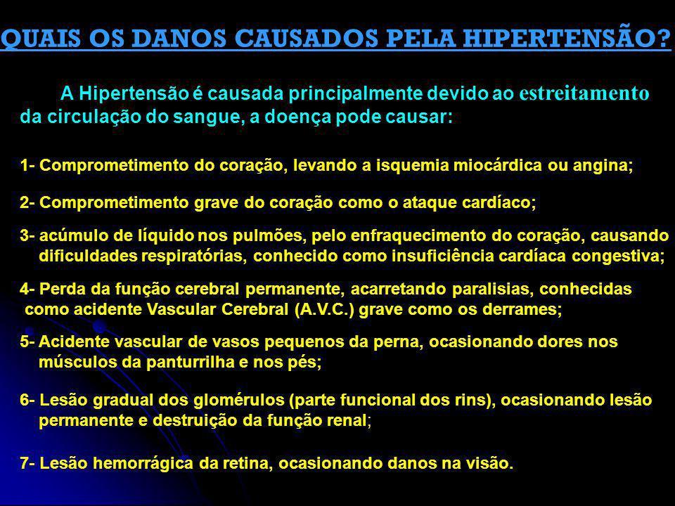 QUAIS OS DANOS CAUSADOS PELA HIPERTENSÃO