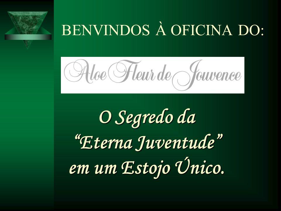 BENVINDOS À OFICINA DO: