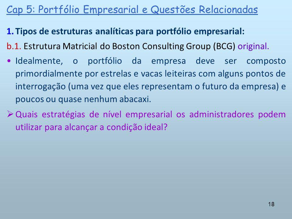 Cap 5: Portfólio Empresarial e Questões Relacionadas
