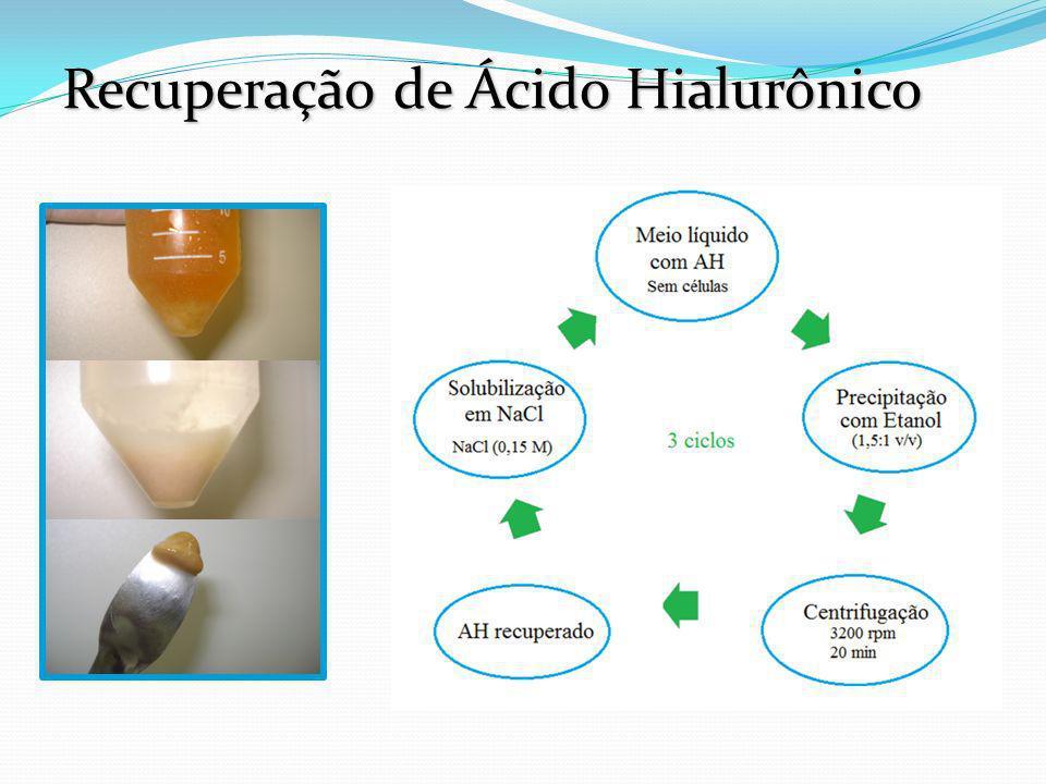 Recuperação de Ácido Hialurônico