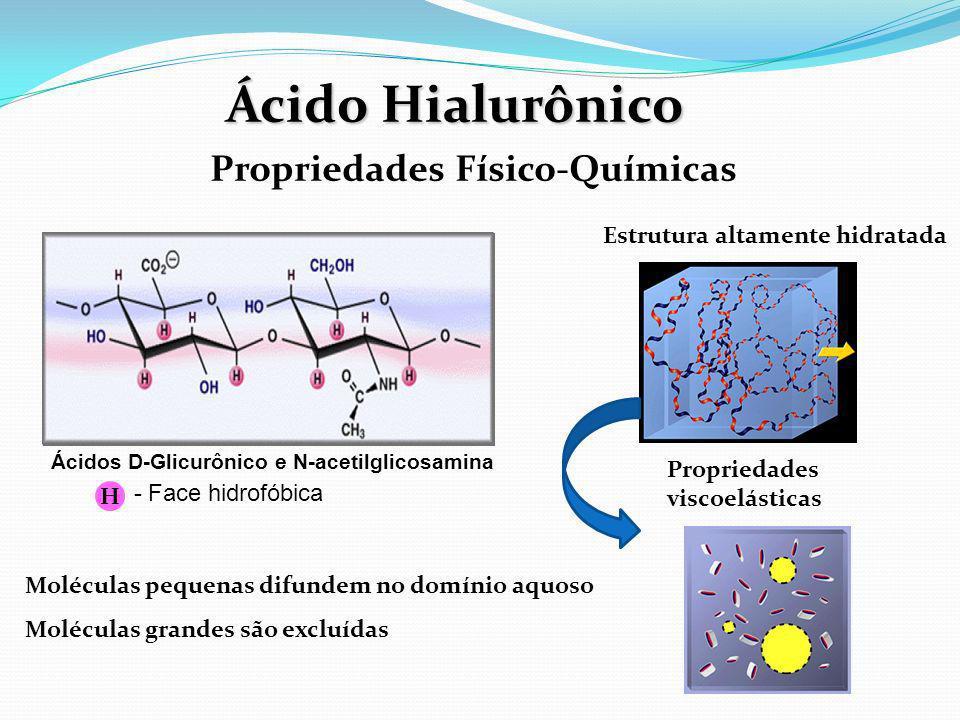 Ácido Hialurônico Propriedades Físico-Químicas