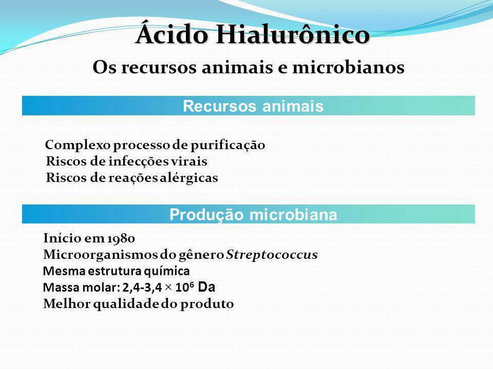 Ácido Hialurônico Os recursos animais e microbianos Recursos animais