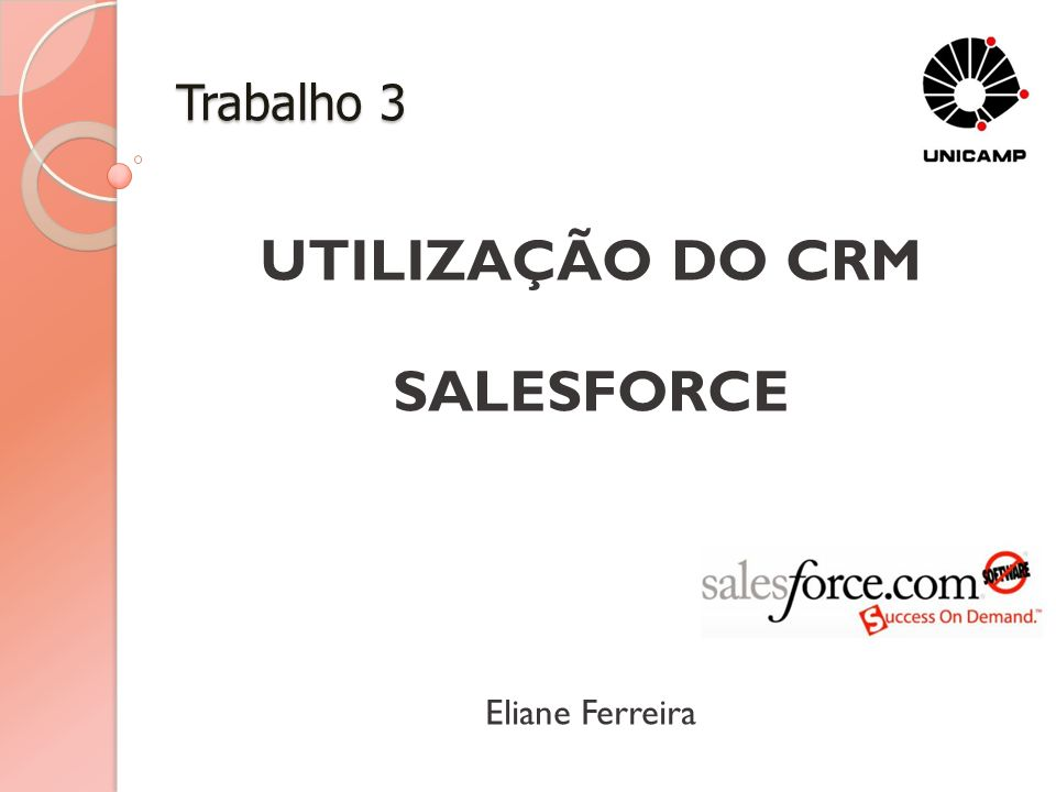 UTILIZAÇÃO DO CRM SALESFORCE Eliane Ferreira