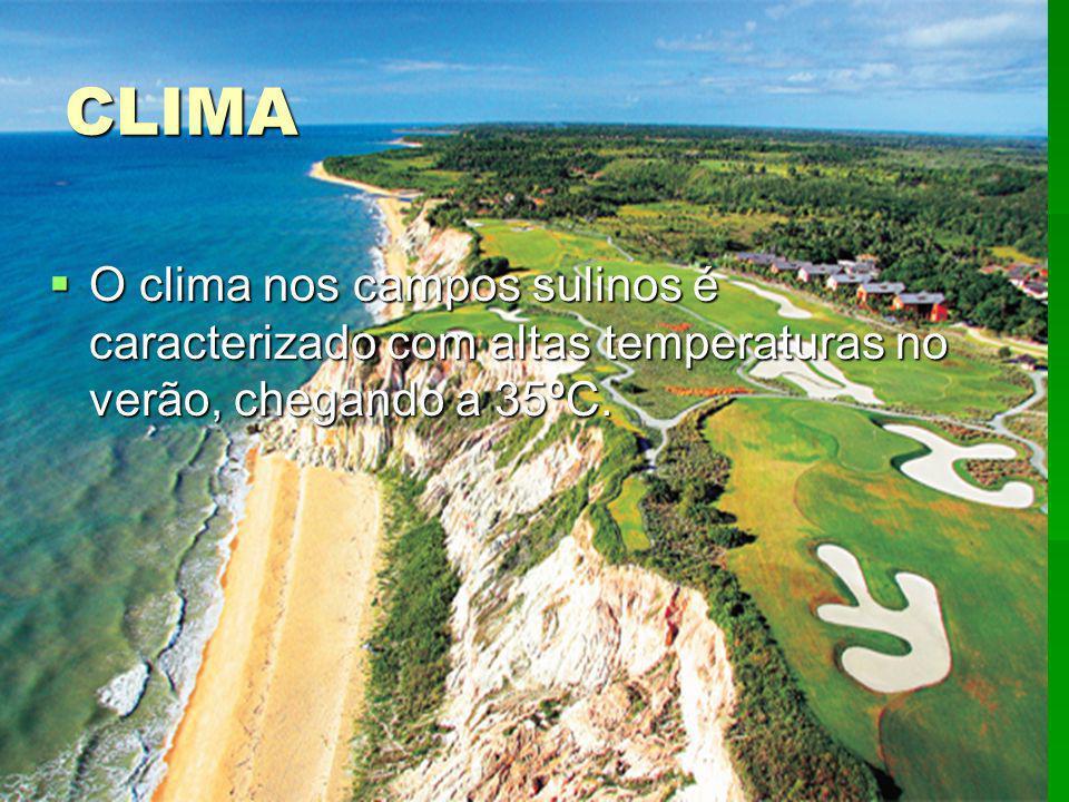 CLIMA O clima nos campos sulinos é caracterizado com altas temperaturas no verão, chegando a 35ºC.