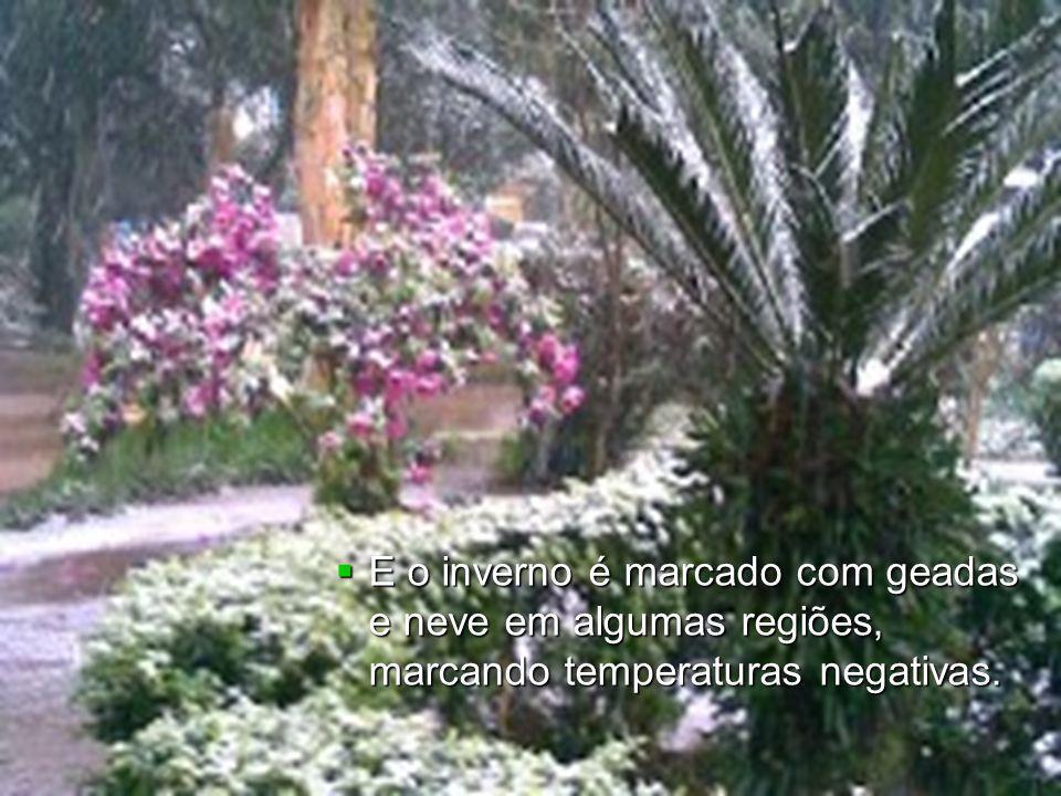 E o inverno é marcado com geadas e neve em algumas regiões, marcando temperaturas negativas.