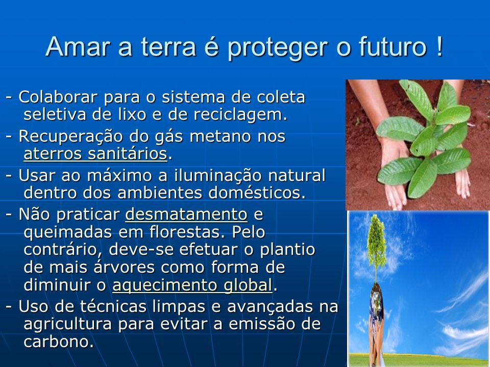 Amar a terra é proteger o futuro !