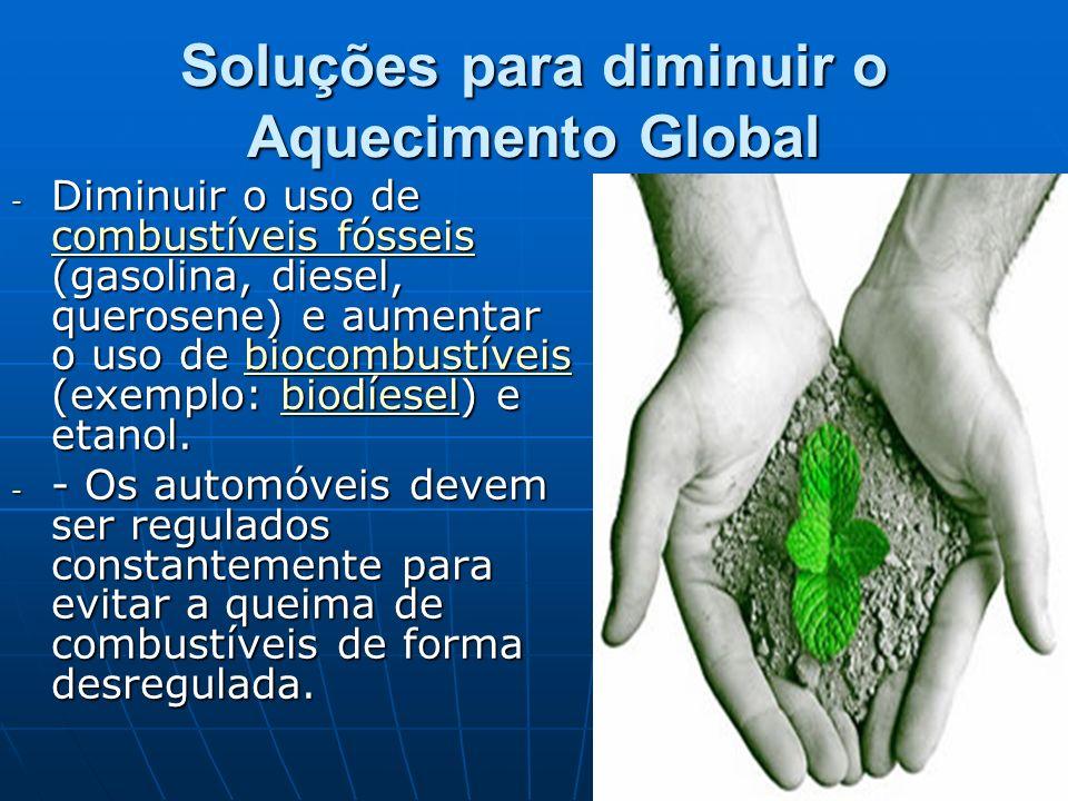 Soluções para diminuir o Aquecimento Global