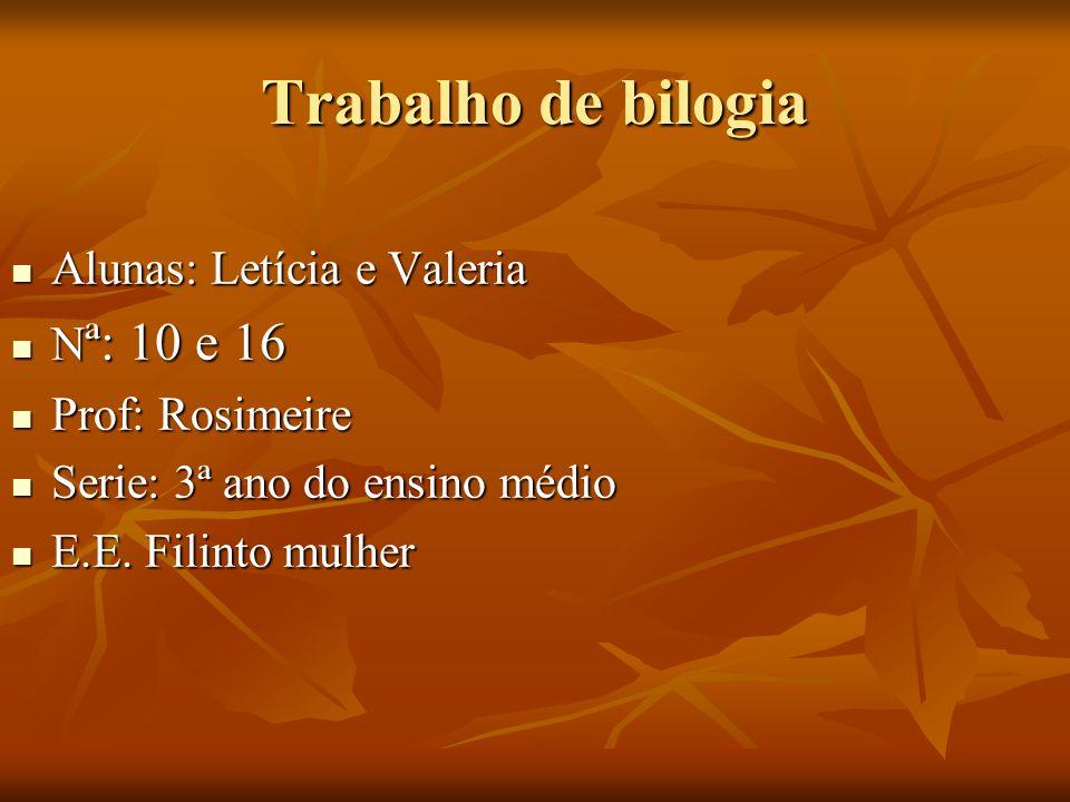 Trabalho de bilogia Alunas: Letícia e Valeria Nª: 10 e 16
