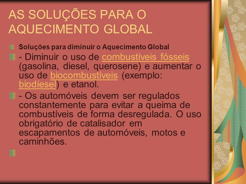 AS SOLUÇÕES PARA O AQUECIMENTO GLOBAL