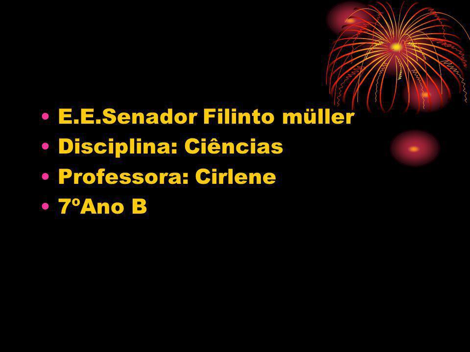 E.E.Senador Filinto müller