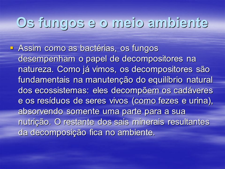 Os fungos e o meio ambiente