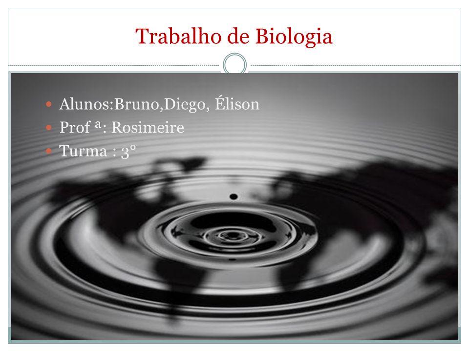 Trabalho de Biologia Alunos:Bruno,Diego, Élison Prof ª: Rosimeire