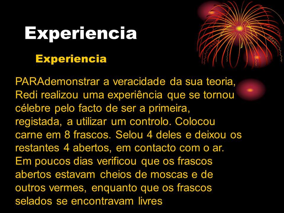 Experiencia Experiencia