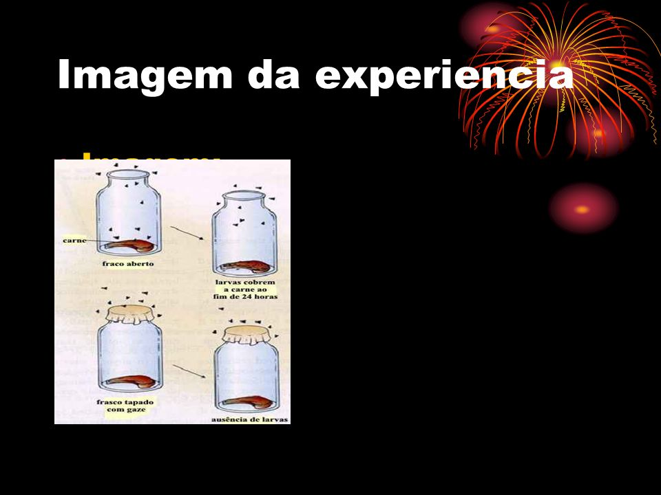 Imagem da experiencia Imagem;