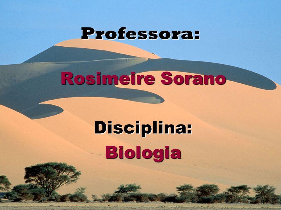 Professora: Rosimeire Sorano Disciplina: Biologia