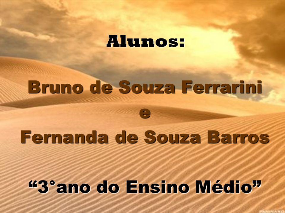 Bruno de Souza Ferrarini Fernanda de Souza Barros