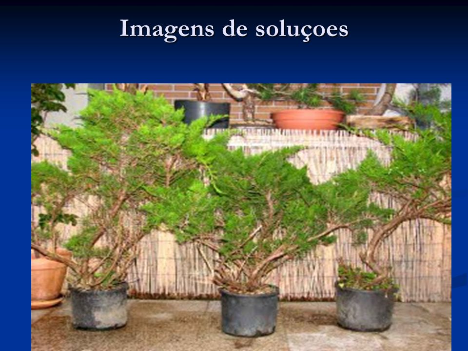 Imagens de soluçoes
